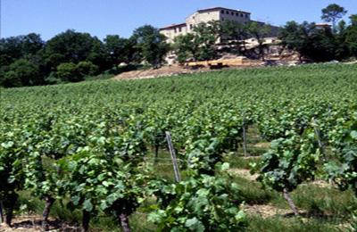 Cahuzac sur Vère:Chateau de Salettes