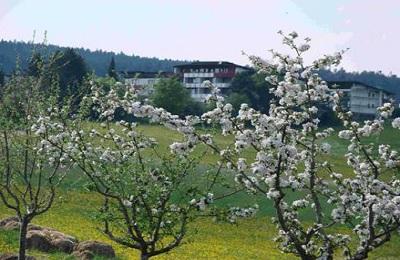 Lossburg (Baden-Württemberg):Wellness Hotel Park-Hill