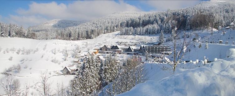 Bad Peterstal-Griesbach:Hotel Dollenberg